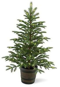 'Feel Real' Pre-lit Artificial Tree For Entrances and Christmas | White Lights