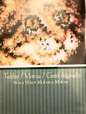 wonderart Natura Calico tabby cat kitten latch hook kit 12in x12in- unopened