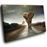 A533 Africa Elephant Sunset Funky Animal Canvas Wall Art Large Picture Prints