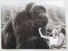 MEIN GROSSER FREUND JOE - Pressefoto #2 - Charlize Theron - Ron Underwood