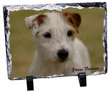 Parson Russell Terrier 'Yours Forever' Photo Slate Christmas Gift Or, AD-PRT1ySL