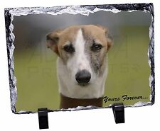Whippet Dog 'Yours Forever' Photo Slate Christmas Gift Ornament, AD-WH2ySL