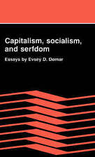Capitalism, Socialism, and Serfdom: Essays by Evsey D. Domar by Evsey D. Domar