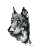 BEAUCERON Pencil Drawing 8 x 10 DOG ART Print by Artist DJ Rogers
