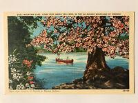 Mountain Lake, Alleghany Mountains of Virginia VA Postcard