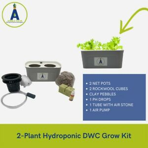 2 PLANT FULL KIT INDOOR HERB GARDEN HOME DECOR HYDROPONIC GROW SYSTEM