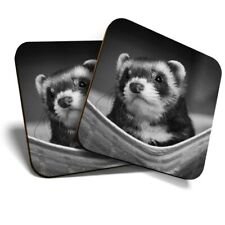 2 x Coasters (Bw) - Ferret Hammock Pet Rodent Animal #37246