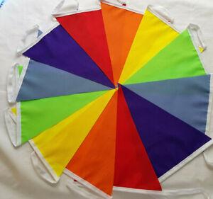 Rainbow Fabric Bunting 30 FEET 6 colours: R.O.Y.G.B. Purple Pride Party wedding