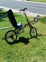 Rans Rocket Recumbent Bicycle Frankenstein