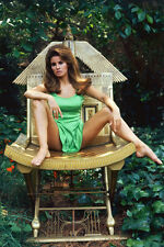 RAQUEL WELCH SITTING LEGS APART COLOR POSTER PRINT