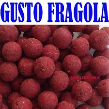 BOILES BOILE CARPFISHING FRAGOLA DIAM 20MM CARP FISHING PASTURA ESCHE AROMI