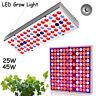25W 45W LED Grow Light Lamp Vollspektrum 2835SMD Reflektorschale Pflanzenlampe