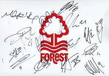 NOTTINGHAM FOREST - Multi Signed 12x8 Crested Sheet by 16 - 2014-15 - FOOTBALL