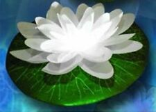 Set of 6  White LED Floating Lily Lights Up In Water White LED