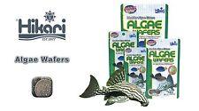 Hikari Algae Wafers 250g Pleco Catfish Food