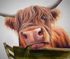 "Highland cow Colourful wall art printed on canvas 22'' X 22"" solid frame"