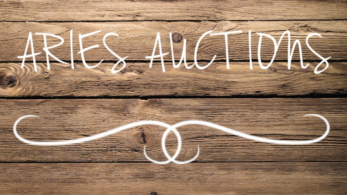 aries_auctions