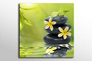 Japanese Zen Calming Large Canvas Wall Art Green Picture Stunning New Print