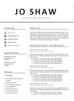 DOWNLOAD NOW - Modern, Professional CV Template in Microsoft Word format