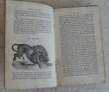 Vintage Book 1831 Buffon's Natural History John Wright Vol II Wild Animals