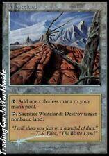 Wasteland // Foil // NM // Player Reward Promos // engl. // Magic Gathering