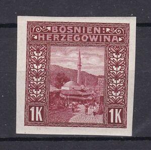 Bosnia Herzeg- 1906 year - Michel 42 U  - MH