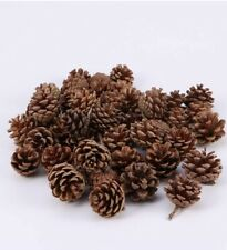 New Natural Pine Cones - Packs of 25 & 50 Craft, Decorations