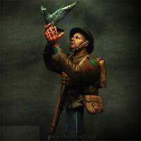 1/9 Unpainted War Pigeons and Duke of Wellington Bust Resin Kits GK Unassembled