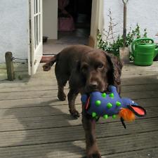 Gigwi Duraspikes Extra Tough Dog Toy