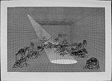 Fabrizio Clerici litografia realizzata dal Bisonte 47x65 firmata numerata 1969