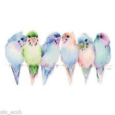 Budgies Parakeet Bird HEAT PRESS TRANSFER PRINT for T Shirt Sweatshirt Bag  #212