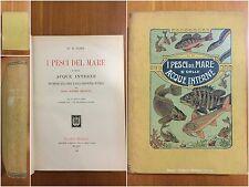 2) Libro I pesci del mare e delle acque interne L. Scotti Hoepli 1909
