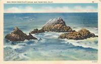 OLD Linen Postcard AH B659 Seal Rocks Near Cliff House San Francisco California