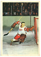 1963/64 Toronto Star Terry Sawchuk Photo Card Detroit Red Wings
