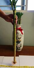 3 Dragon Lucky Bamboo (feng shui) + 1 Free box of Super Green plant food