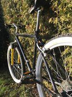 Fahrrad Herrenrad MTB