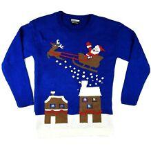 Ugly Christmas Sweater Santa Reindeer Sleigh Womens Size Medium