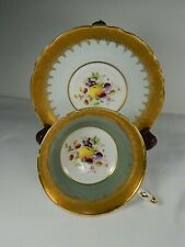 Paragon Tea Cup and Saucer. FRUIT Pattern. Heavy Gold.