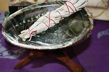 NEW SMALL Abalone shell incense burner Set - Wicca, Witch