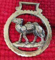 Large Vintage Brass Horse Harness Bridle Medallion -  Camel (#106)