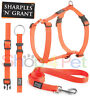 Dog Harness Collars & Leads Walk 'r' Cise Reflective NEON ORANGE FOR PET