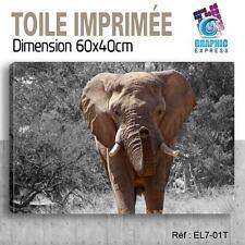 60x40cm -TOILE IMPRIMÉE - TABLEAU  POSTER DECO -ELEPHANT FELIN - EL7-01T