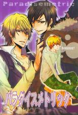 DRRR!! (Durarara!!) Doujinshi Izaya x Shizuo and Masaomi x Shizuo Paradise Metri