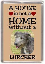"Lurcher Dog Fridge Magnet ""A HOUSE IS NOT A HOME"" by Starprint"