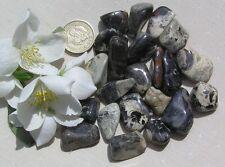 12 Stunning Silver Leaf Jasper Crystal Tumblestones