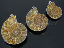 Natural Ammonite Fossil Snail Gemstone 18K Silver Plated Pendant Charm Beads