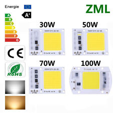 30W 50W 70W 100W LED Chip Input Integrated Smart IC Driver Floodlight 110V 220V