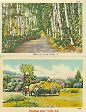 Tioga Pa Collector's Set: Loading the Hay Harvest and Birch Path Greetings