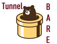 Tunnel Bare 1 year warranty  Unlimited Bear Data vpn | 12 Months