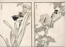 1881 double woodblock prints, Bairei, Birds Flowers, plate 7, Vol 1